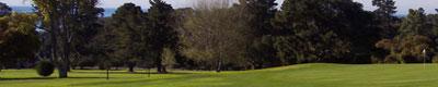 Golfing greens.